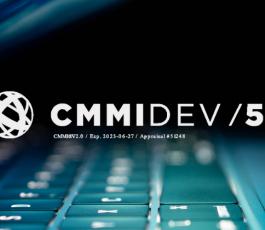 Improving organizational capability and performance through CMMI – NashTech's sharing at VNITO